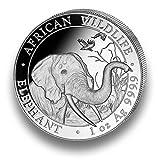 Silbermünze Somalia Elefant 2018 - African Wildlife - 1 Unze Silber 999.9 - einzeln in Münzkapsel verpac