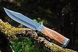 VIKING GEAR® klassisches Messer - Einhandmesser 23cm - Gürtelmesser - Jagdmesser - Arbeitsmesser - Gartenarbeit - Survival - Freizeit - Messer - Prepper Knifer - Holster,schwarz - Messer Silber,brau