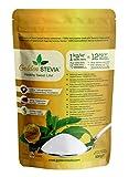 Golden stevia pulver zuckerersatz 500g =6 kg zucker, xucker light 12-mal süßer low carb Süßstoff für keto diät, diabetiker zucker, weight watchers produkte backen mit stev