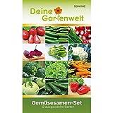 Gemüsesortiment | Gemüse-Set mit 12 Sorten Samen | Gemüsesamen-Sortiment | Saatgut für den Gemüsegar